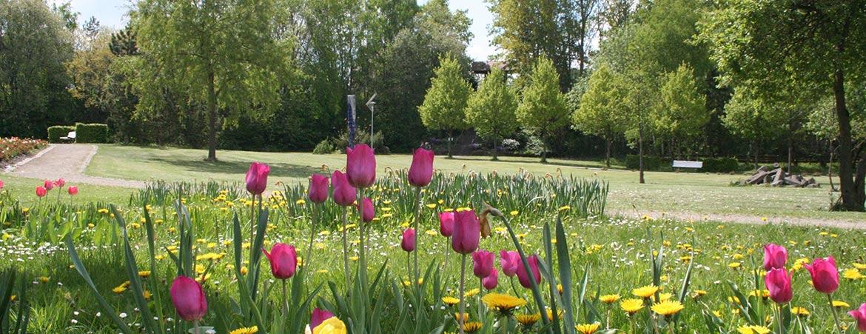 Park Naumburg